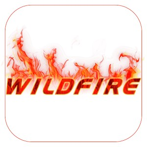 Wildfire - Axis Bank